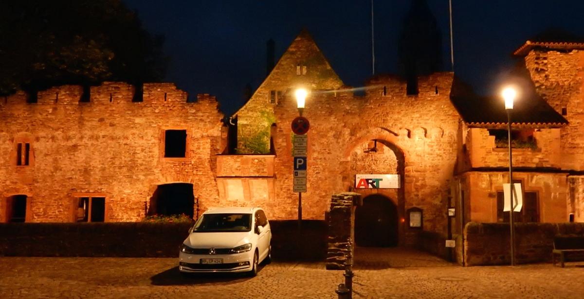 Summer Camp 2019 in Heidelberg: Small castle ruins
